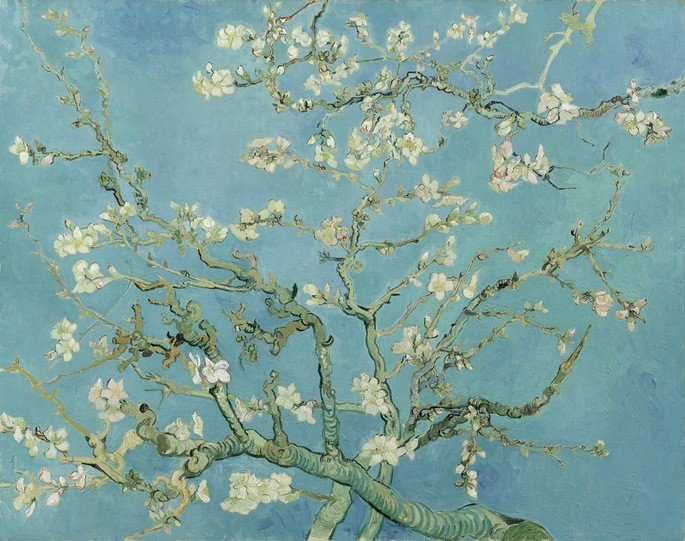 1890 Almond Blossom Saint-Rémy-de-Provence, February oil on canvas, 73.3 cm x 92.4 cm Van Gogh Museum, Amsterdam Vincent van Gogh Foundation