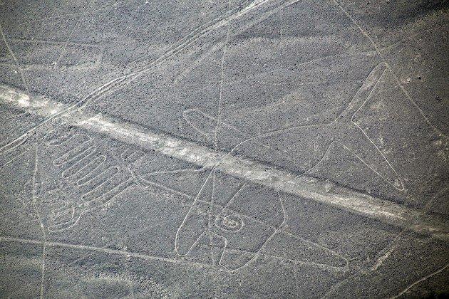 Vista detalle de la ballena. Nazca.