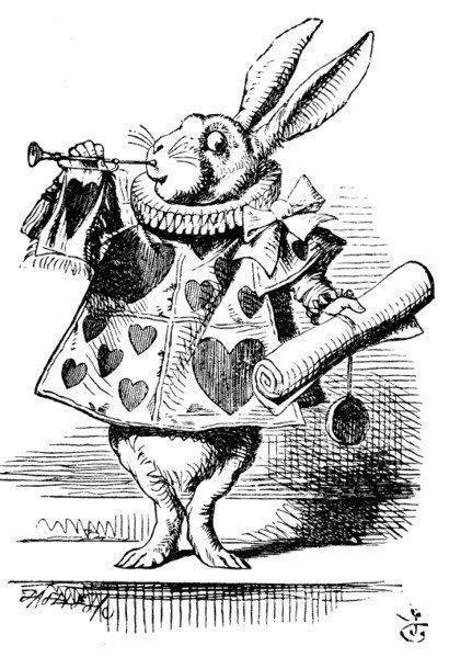 Ilustración del Conejo