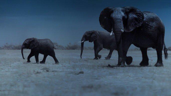 Fotograma del documental La tierra de noche