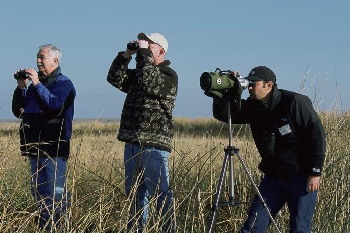 Fotograma del documental Pajareros