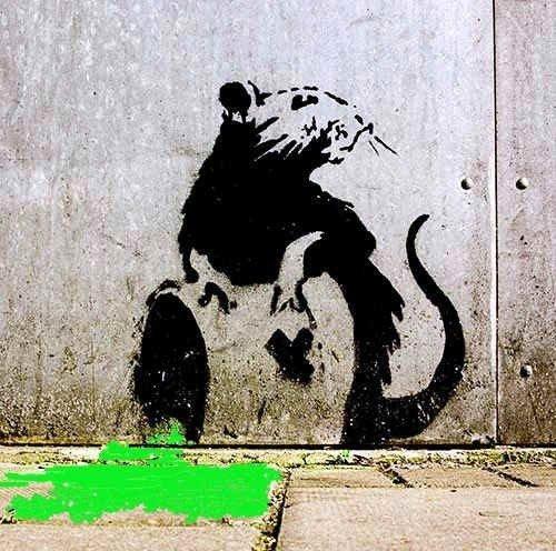 Toxit Rat