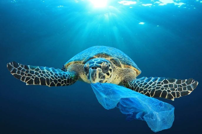 Fotograma del documental Un océano de plástico
