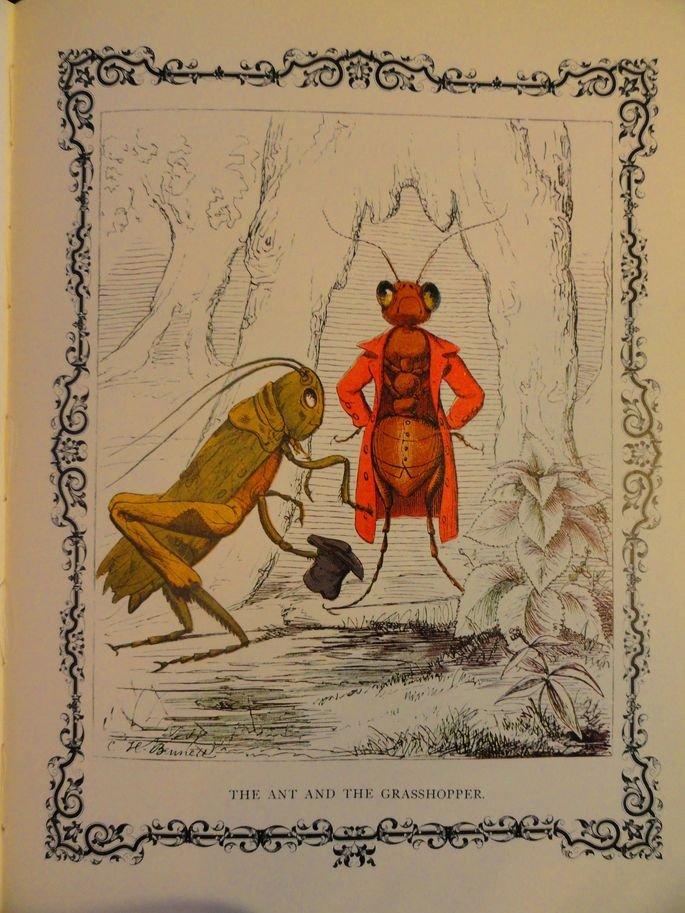 Ilustração A Cigarra e a Formiga.