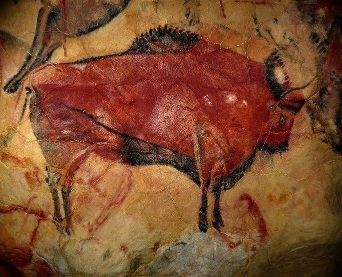 desenho rupestre de grande bisão em parede de caverna em Altamira, Espanha