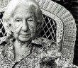 Cora Coralina: 10 poemas essenciais para compreender a autora
