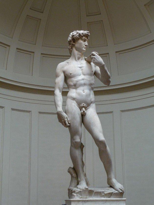 Davi - Galleria dell'Accademia, Florença