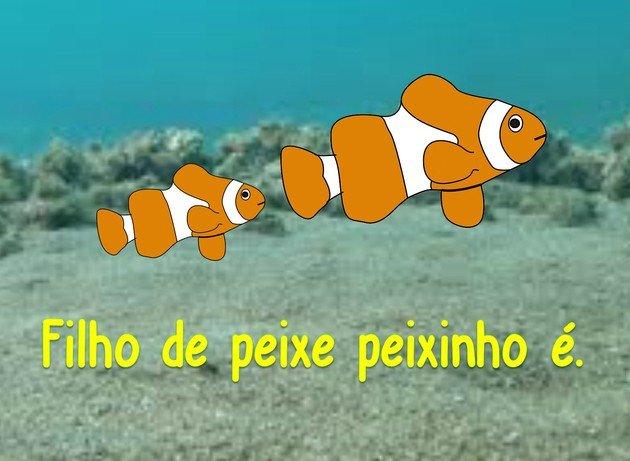 filho de peixe