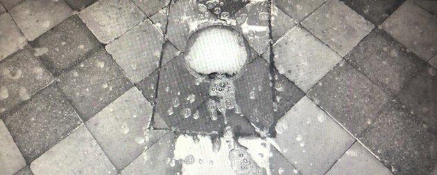 A primeira cena de Roma é da calçada da casa sendo lavada por Cleo.