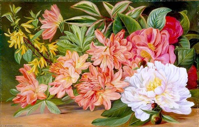 Quadro Flores Japonesas, de Marianne North.