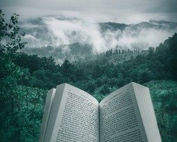 Os 12 melhores livros de suspense que você precisa conhecer