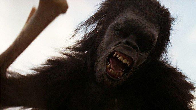 Frame: macaco
