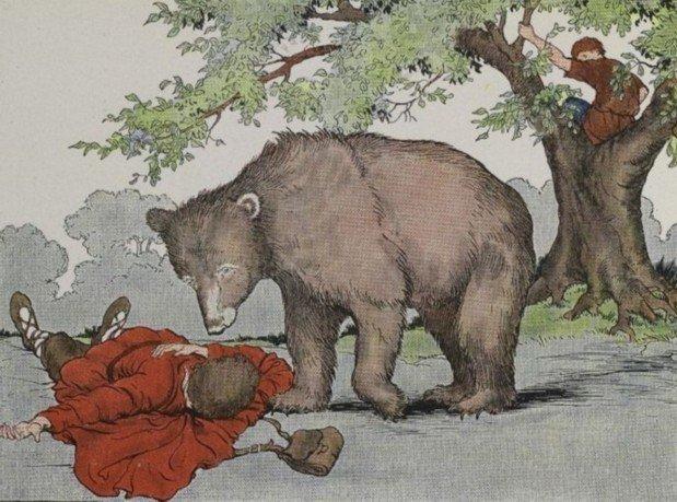 os viajantes e o urso
