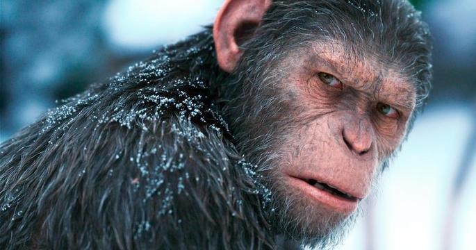 Frame do novo filme da franquia Planeta dos Macacos.