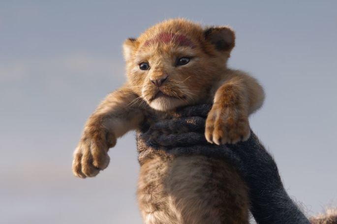 Imagem do filme O Rei Leão.