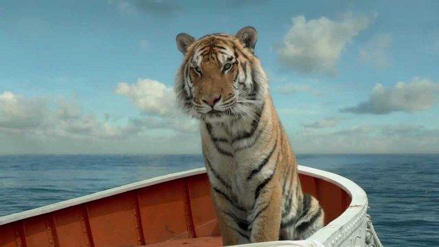 O tigre de bengala utilizado em praticamente todas as cenas foi gerado por computador.